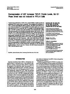 Overexpression of USF Increases TGF-β1 Protein Levels, But