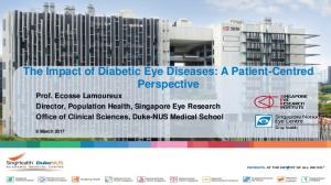 The Impact of Diabetic Eye Diseases: A Patient-Centred
